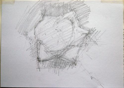 dessinRose1_2